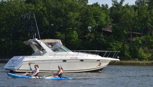 paddle board & kayak rental